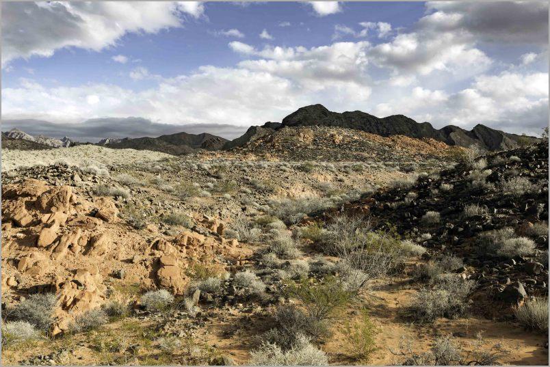 Open Range in Eastern Nevada