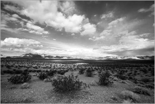 High Desert in Eastern Nevada