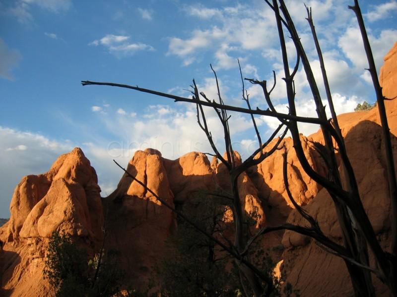 Red Rocks (Utah)