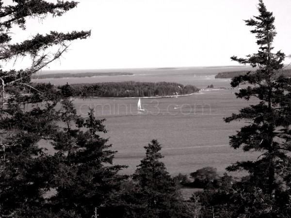 Acadia View in Monochrome