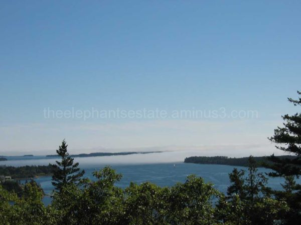 Acadia National Park: View From Flying Mountain