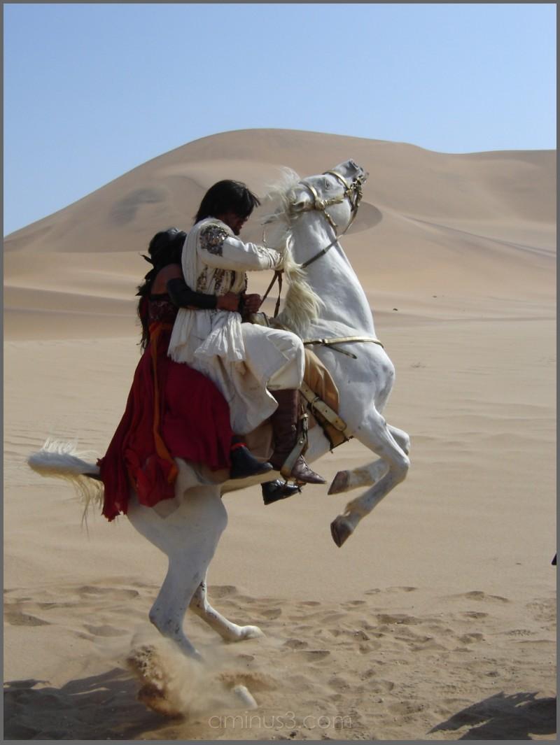 rearing arab