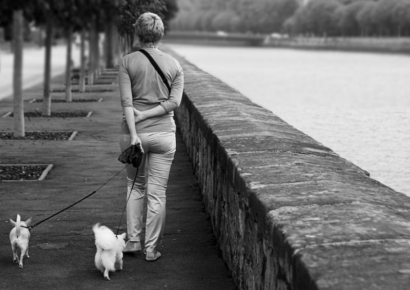 Walking beside the river