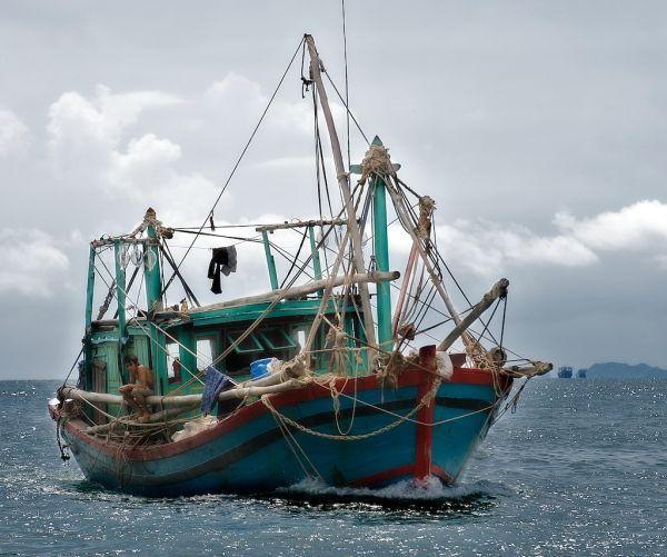 Fishing in Tonkin bay