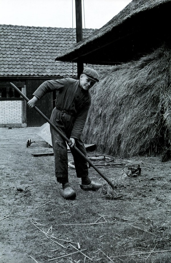 Farming in the Netherlands