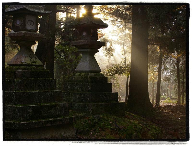 Lanterns at Kasuga Taisha, Nara #2
