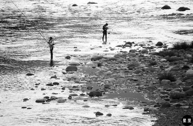 Gujō-Hachiman -.- Ayu fishing