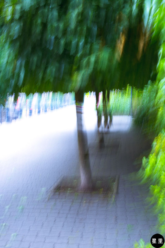 under the linden trees