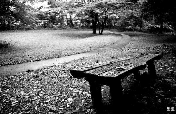 Kotaro Takamura's bench