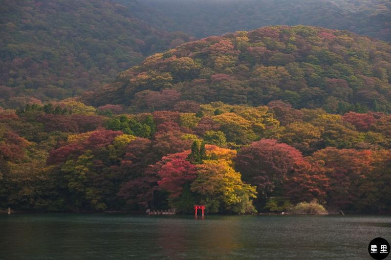 Autumn colours and Lake Ashi