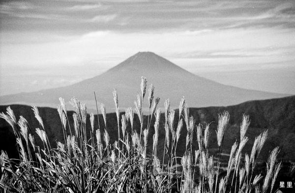 View of Mt Fuji