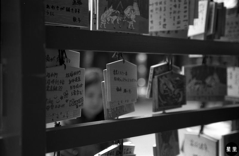 Ema at Hakone Shrine