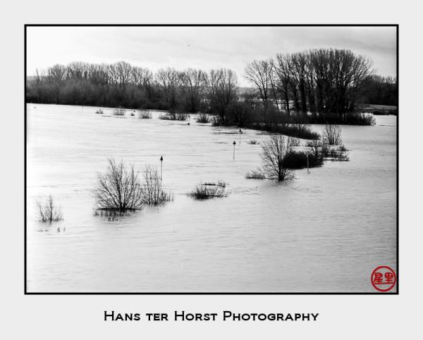 River IJssel filling its floodplains