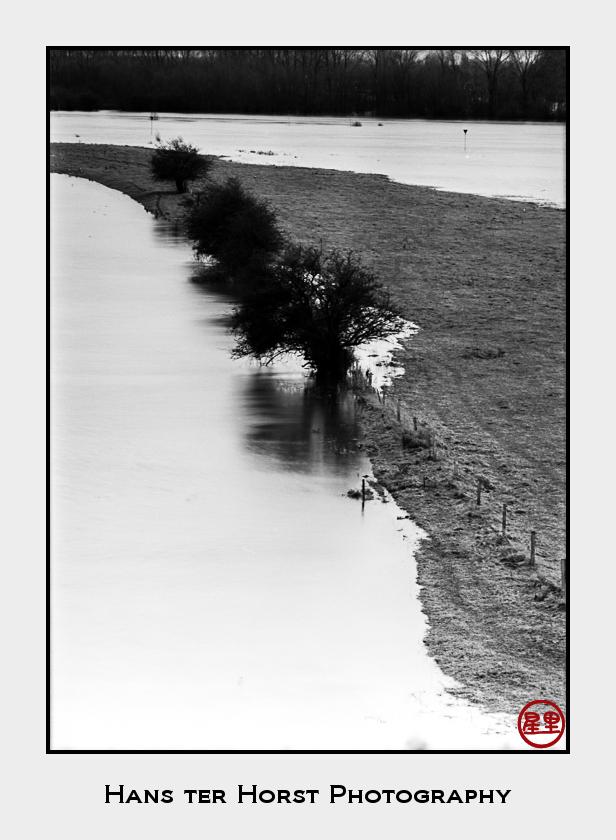Floodplains of the River IJssel
