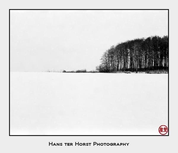 Where snow and sky meet