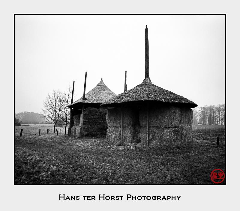 Haystacks in Caffenol