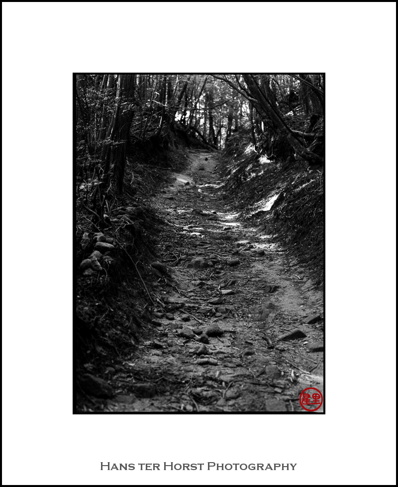 Walking the old road to Nara