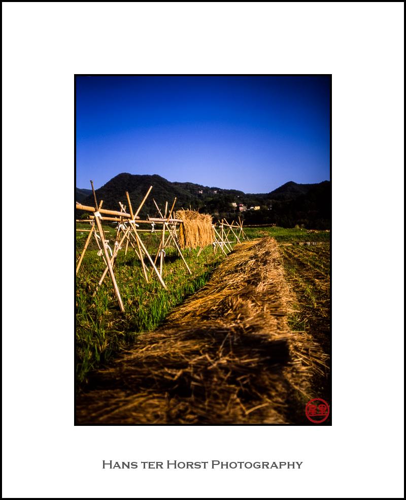 Rural Japan