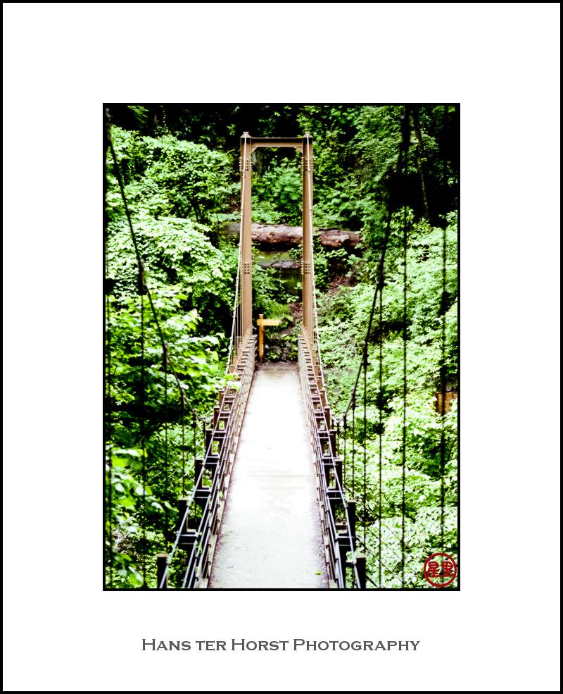 Mt. Takao rope bridge
