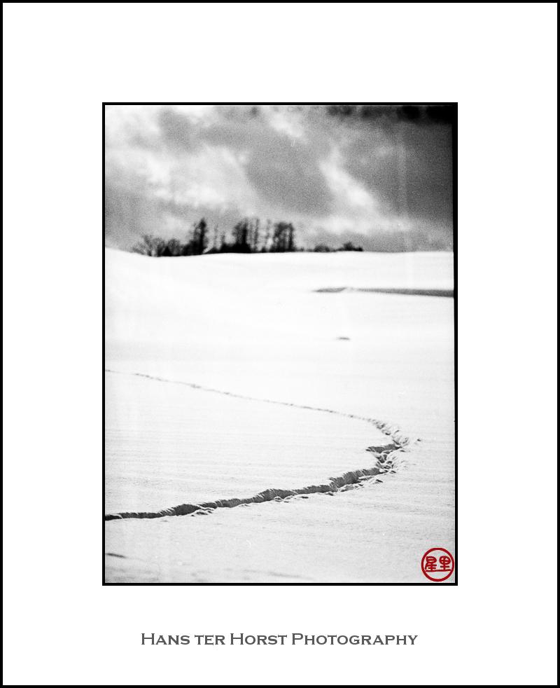 Tracks in the snow, Hokkaido
