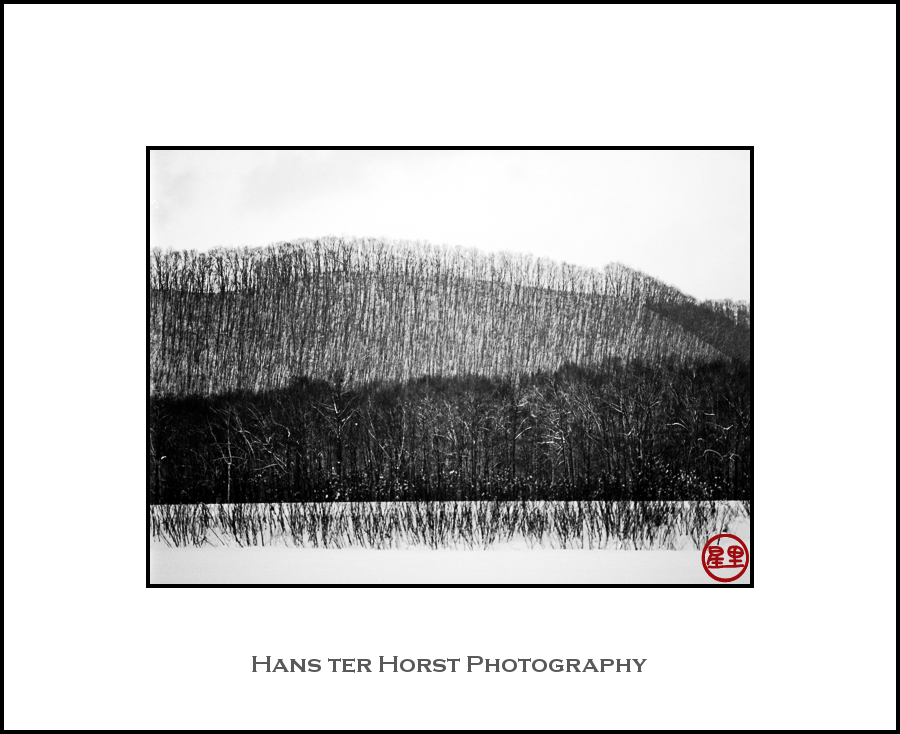 Hills of Hokkaido