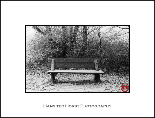 Vintage camera, park bench