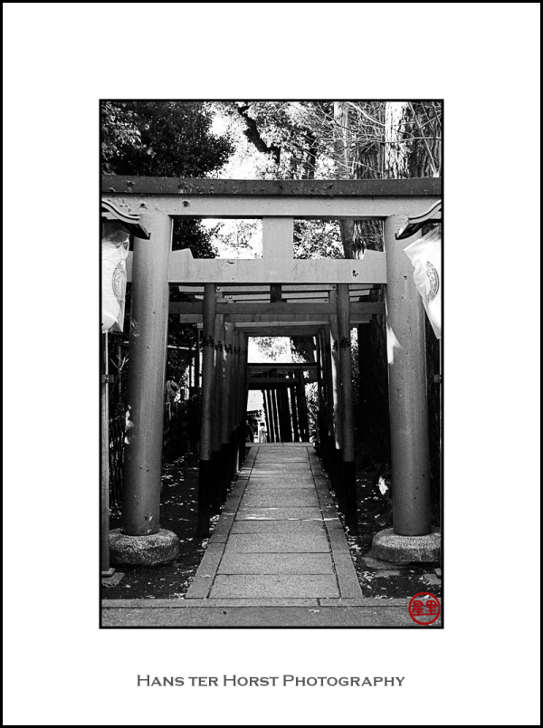Ueno Park, path to a Shinto shrine