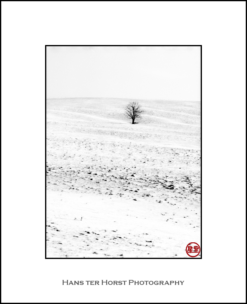 Empty snow landscape