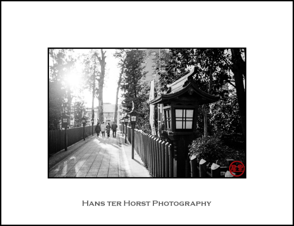 Lantern at Shinto Shrine