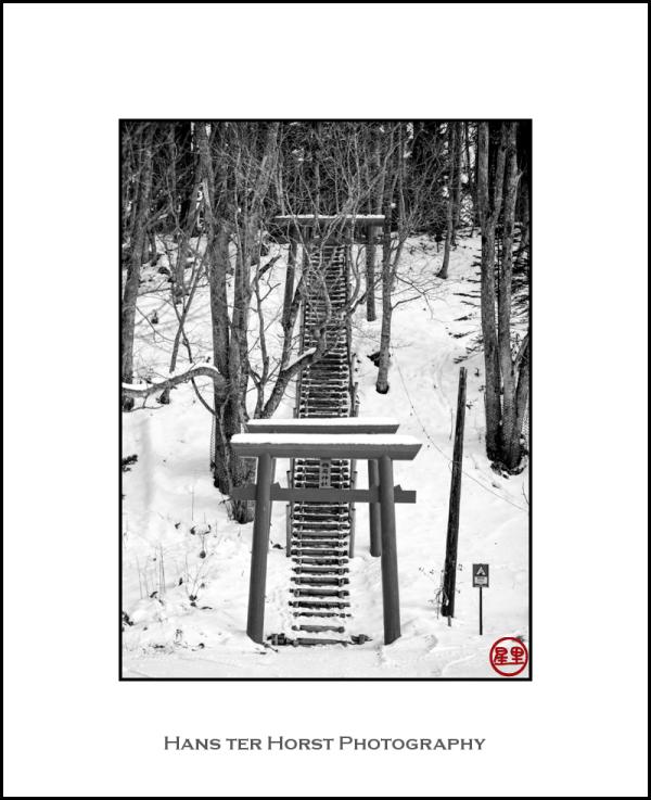 Steps and Torii leading to a Shinto shrine