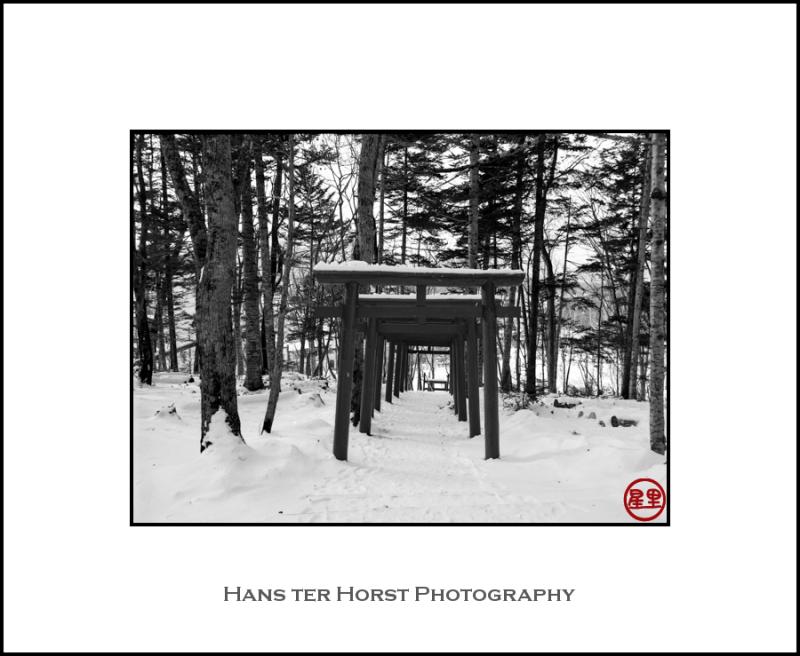 Row of toriis