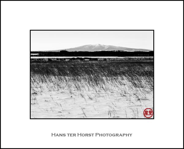 Empty Hokkaido landscape