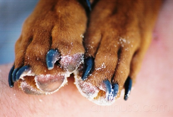 Sandy feets :)