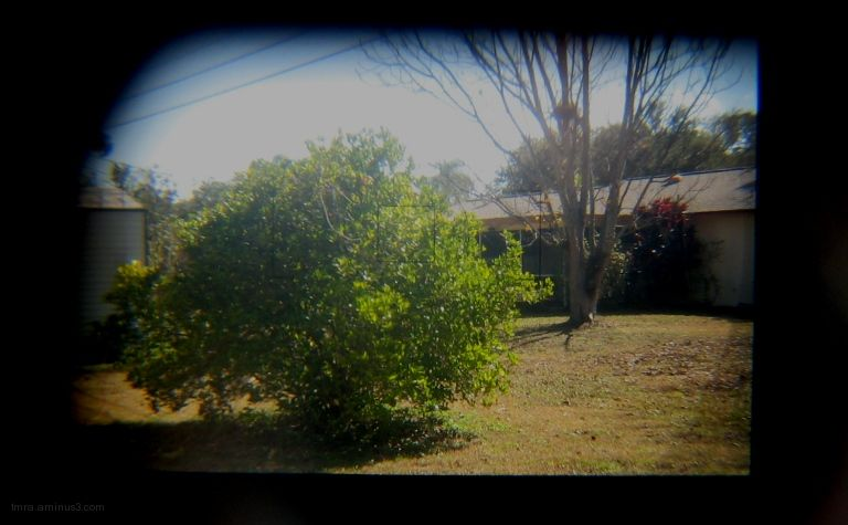 Through the Viewfinder