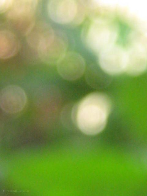 """""""grassian blur"""""""