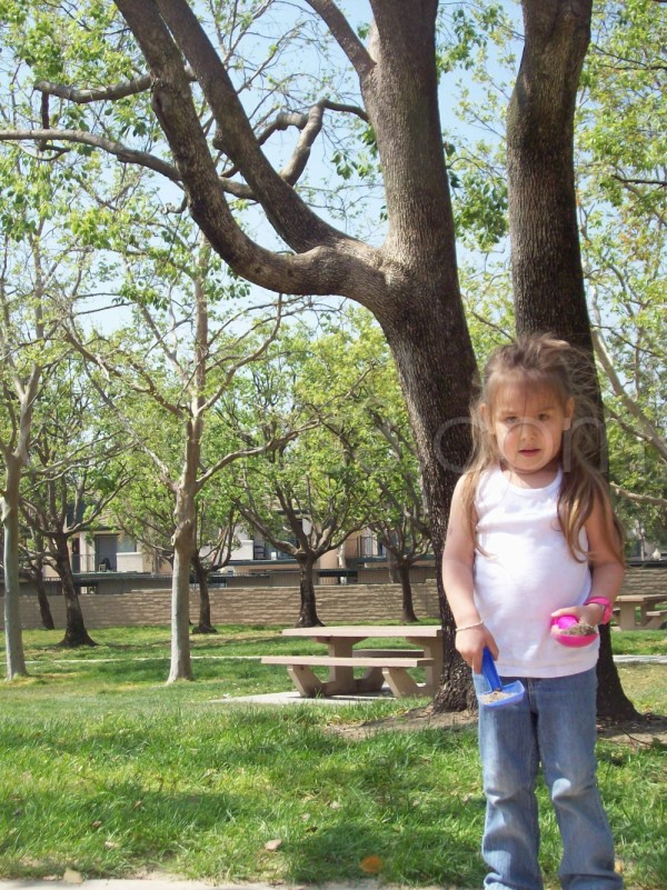 Rylie at Spruce Street Park, Rancho Cucamonga, CA