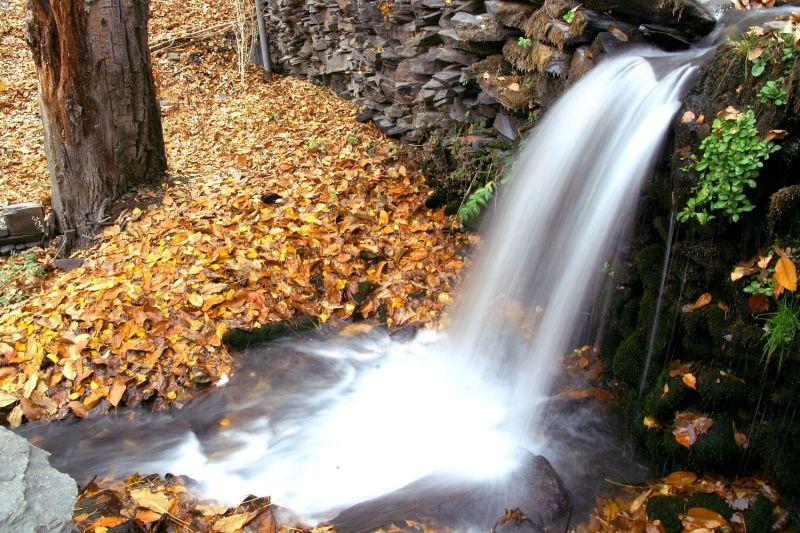 Autumn (15)