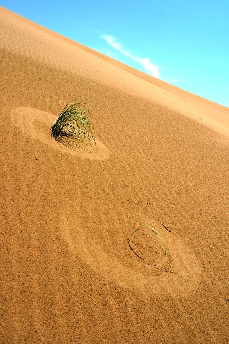 Kavir Desert(5)
