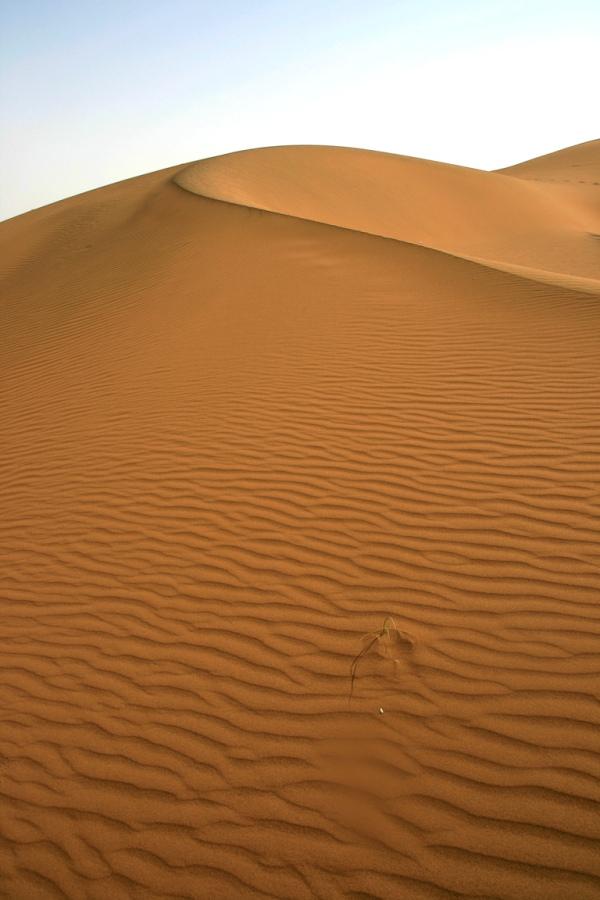 Shahrood desert (1)