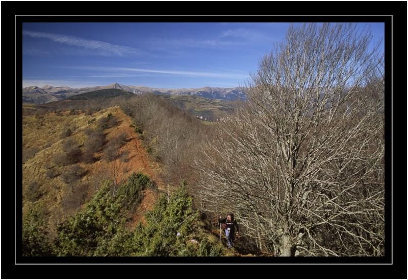 Comanegra, La Garrotxa, Catalunya