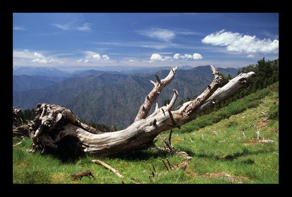 Estiu al Pallars