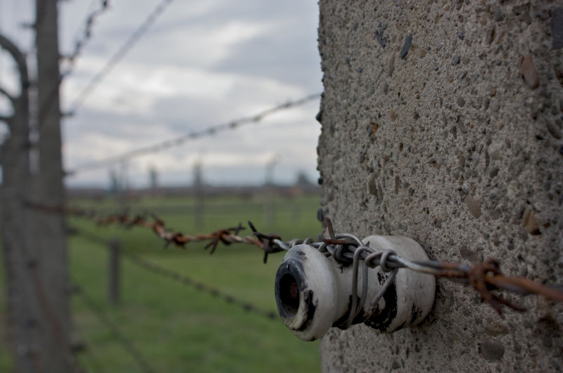 A shot of the electrified fence at Auschwitz II.