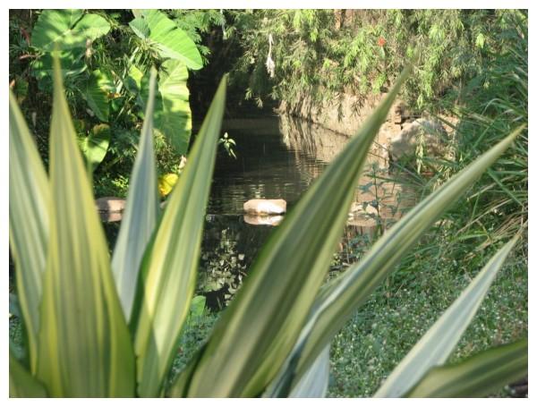Nala Park at Koregoan Park, Pune