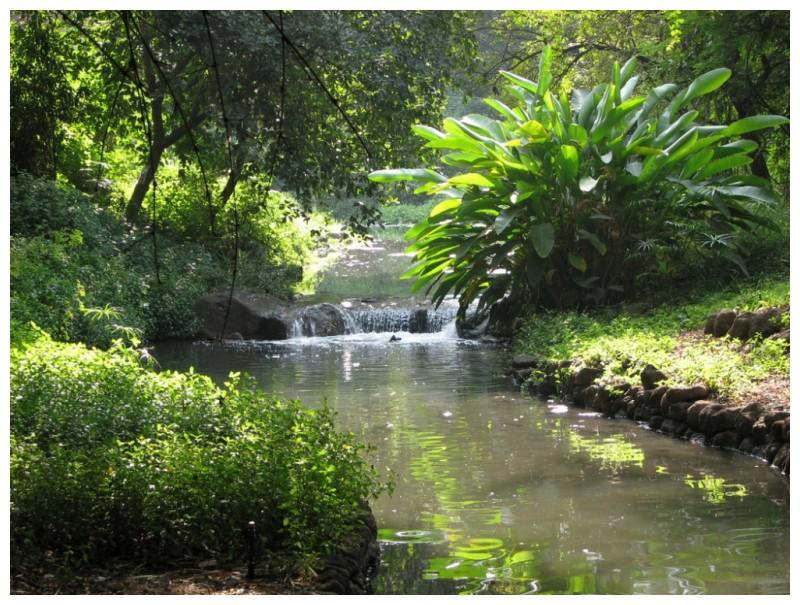 Nala Park at Koregoan Park, Pune II