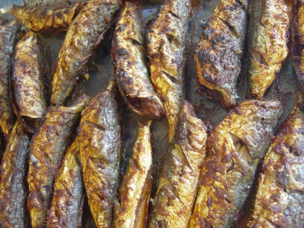 Oven-baked Sardines
