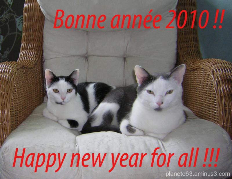 pour une nouvelle année...........................