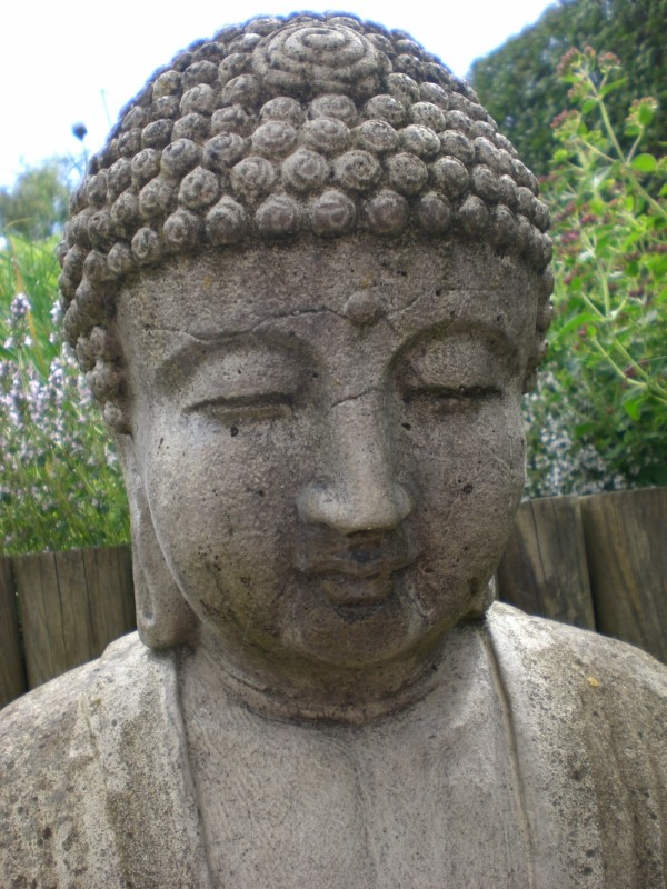 Enlightenment in the Garden