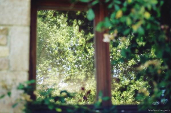 Fenêtre sur l'été