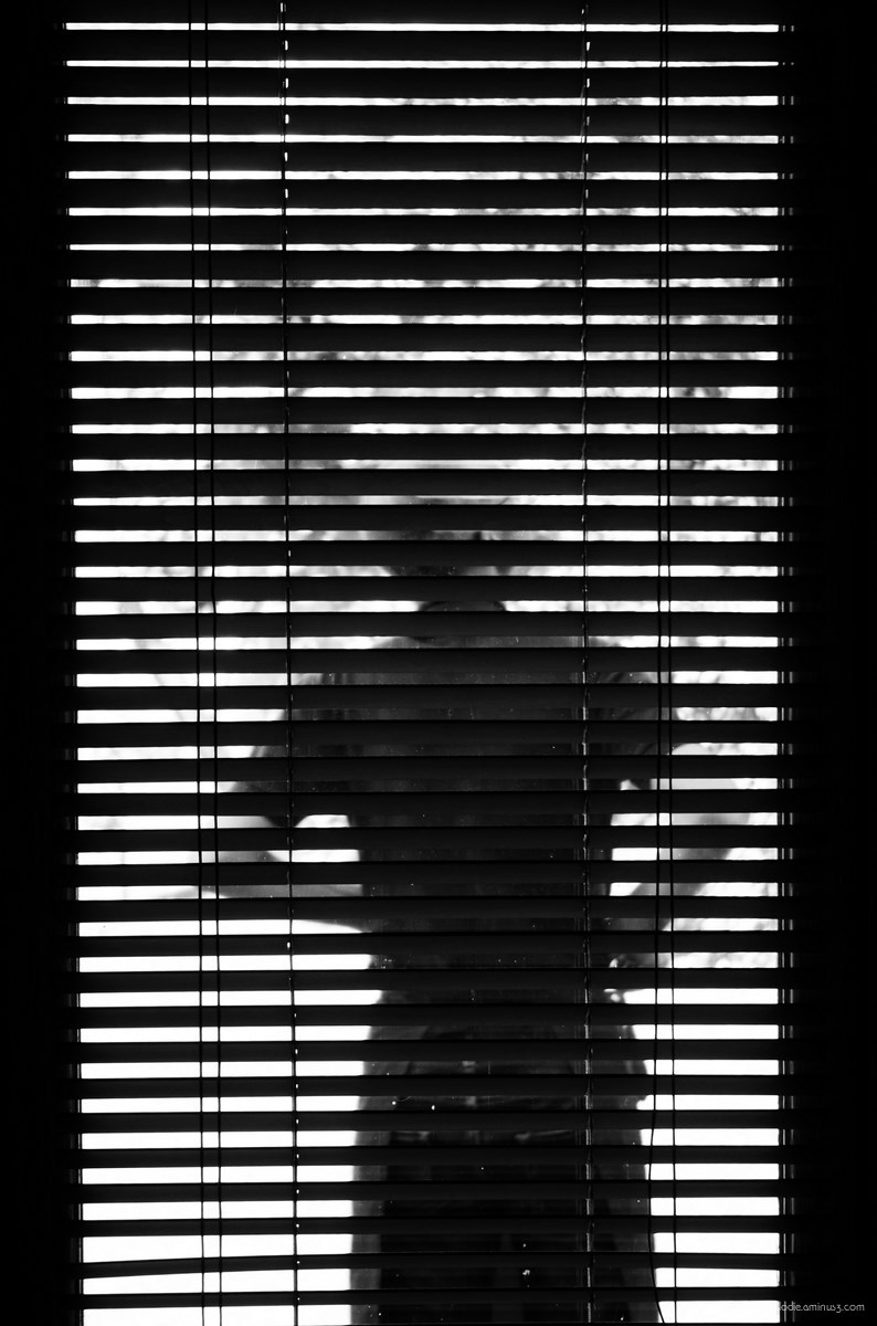 elodie hergoualch store silhouette