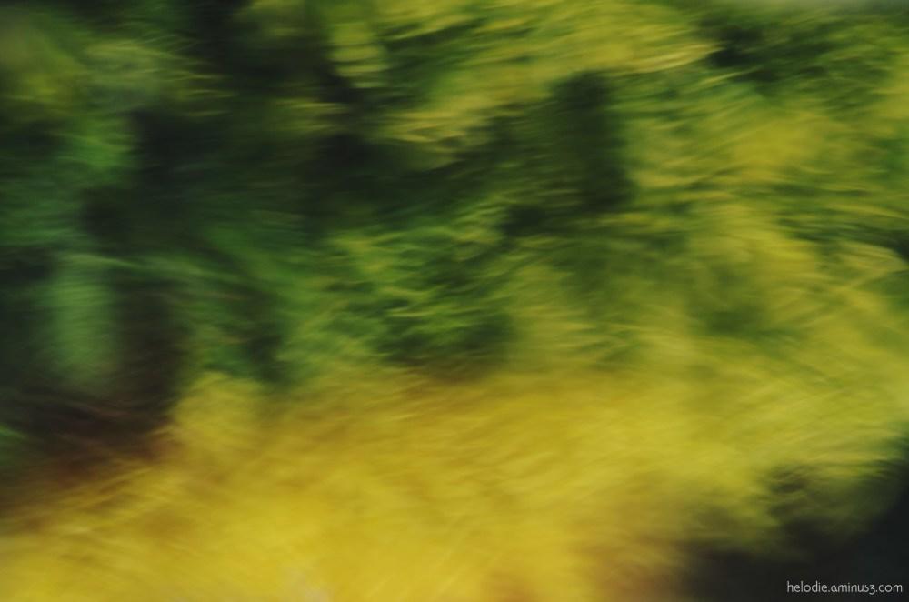 elodie hergoualch astract water reflet